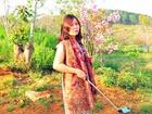 Bẻ hoa hội chợ, Phó Giám đốc Sở Tư pháp Bình Thuận xin lỗi công chúng