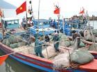 Đã bồi thường gần 5.500 tỷ đồng cho ngư dân bị thiệt hại sau sự cố môi trường biển