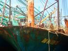 Thủ tướng yêu cầu làm rõ vụ đóng tàu cá vỏ thép kém chất lượng