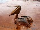 20 bức ảnh gây sốc về nguồn nước ô nhiễm trầm trọng