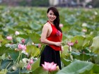 Video: Hà Nội vào mùa Sen