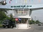 Vườn ươm công nghệ tại Cần Thơ thiếu chuyên gia Hàn Quốc hỗ trợ điều hành