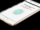 Oppo F3 Lite chính thức lên kệ hôm nay, giá 5,5 triệu đồng