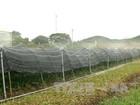 Tiền Giang lập khu nông nghiệp công nghệ cao 1.200 tỷ đồng