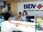 BIDV đề xuất ngân hàng tự quyết định nguồn cổ tức để tăng vốn