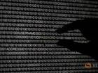 Trang web của quân đội Mỹ bị tin tặc tấn công