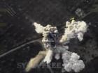 Không quân Nga một đòn hạ 22 thủ lĩnh phiến quân Syria