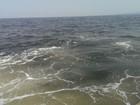 Sau dải nước đỏ, xuất hiện vệt nước sậm khác thường cách Vũng Áng 20km