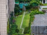 Thành phố Seoul Hàn Quốc đã trở thành thành phố xanh thế nào?