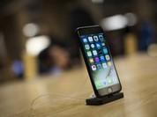 iPhone 7/7 Plus xách tay chênh giá cao so với chính hãng