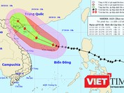 Bão số 7 vào biển Đông, hơn 36.360 tàu thuyền nhận được tin báo bão