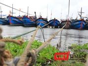 Đà Nẵng khẩn trương triển khai các biện pháp ứng phó với bão số 7