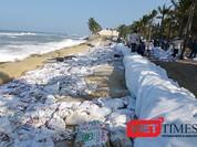 """Hội An: Hàng trăm người nỗ lực """"cứu"""" bờ biển Cửa Đại"""