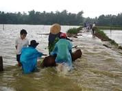 Cảnh báo lũ trên sông các tỉnh miền Trung