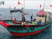 Phóng thích 2 tàu cá Trung Quốc xâm phạm chủ quyền biển Việt Nam