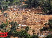 """Dự án """"băm nát"""" Sơn Trà không phép: Thành ủy Đà Nẵng yêu cầu báo cáo!"""