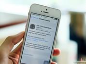 Cách tải và cài đặt iOS 11 cho iPhone, iPad
