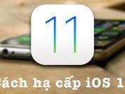 Cách hạ cấp iOS 11 Beta không mất dữ liệu