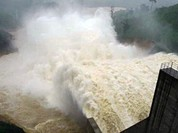 HĐND Quảng Nam thông qua quyết định xây thêm 4 thủy điện ở Nam Trà My