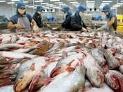 Cục Xuất nhập khẩu: Cảnh báo lừa đảo trong giao dịch thương mại quốc tế