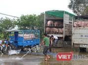 Giá thịt lợn giảm tác động mạnh đến CPI tháng 5/2017
