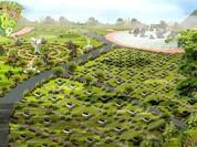 Hà Nội sẽ có công viên nghĩa trang gần 10ha tại Nam Từ Liêm
