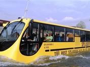 TPHCM sẽ có 2 tuyến buýt đường sông