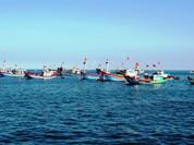 Kiên quyết phản đối việc Trung Quốc đơn phương ban hành quy chế cấm đánh bắt ở Biển Đông