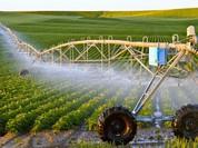 Chậm giải ngân gói tín dụng nông nghiệp CNC: Ngân hàng nhà nước nói gì?
