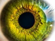 Đánh lừa nhận diện mống mắt Galaxy S8 bằng máy ảnh và kính áp tròng