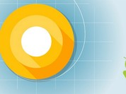 Android O bị trì hoãn phát hành vì một lý do bí ẩn