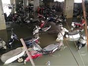 Bảo hiểm TP. HCM phải chi hơn 70 tỷ vì mưa lụt