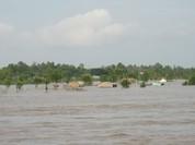 World Bank hợp tác với Đồng Tháp ứng phó biến đổi khí hậu