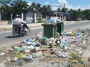 Xử phạt 375 tổ chức vi phạm pháp luật về tài nguyên và môi trường