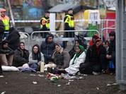 Thụy Điển cân nhắc trục xuất, 8 vạn người di cư về đâu?