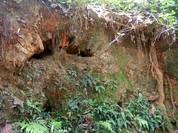 Kho báu ẩn dưới hầm mộ ở Hà Nam?