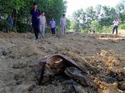 Chính phủ yêu cầu làm rõ vụ chôn lấp rác thải Formosa  ở trang trại của Giám đốc Môi trường