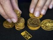 Lạc quan về giá vàng tuần mới, SJC vẫn quanh quẩn 36,5 triệu đồng