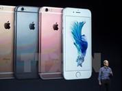 """LHQ lên án FBI vi phạm nhân quyền vì đòi """"bẻ khóa"""" iPhone"""