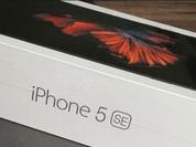 Rò rỉ hình ảnh mở hộp iPhone 5se