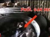 Video: Phù phép gan heo và hóa chất thành thịt bò khô