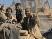 Syria: Hơn 1.000 phiến quân giao nộp vũ khí, đầu hàng