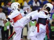Video: Bấn loạn với đội võ sĩ nhí Taekwondo siêu đáng yêu