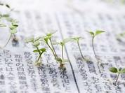 Nhật Bản ra mắt công nghệ biến báo in thành… hoa
