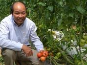 Sẽ hỗ trợ kinh phí chuyển giao công nghệ cao nông nghiệp