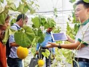 Sẽ hỗ trợ đầu tư nông nghiệp ứng dụng công nghệ cao