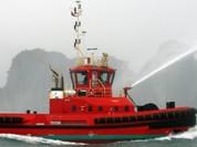 Bộ Giao thông muốn bán Đóng tàu Sông Cấm cho nước ngoài