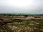 Hà Nội yêu cầu dừng san lấp mặt bằng ở bãi giữa sông Hồng