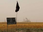 IS bị lộ tài liệu về quản lý chiến lợi phẩm