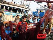 """Vụ tấn công tàu ngư dân Việt: """"Tàu Trung Quốc hành động như cướp biển!"""""""